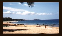 Photograph of Maui beach_ no link