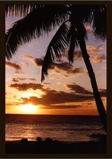 Photograph of Maui sunset_ no link